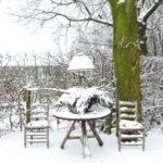 winter-2010-010